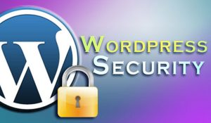 WordPress Vulnerability Database